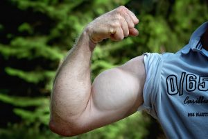 muscles-811479_640